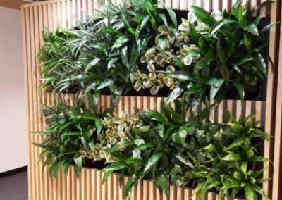 zelene-steny-pixel-garden-02