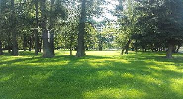 Hydroosev