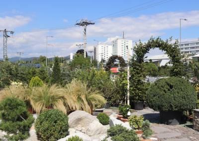 zahradnictvo-predajna-plocha-1
