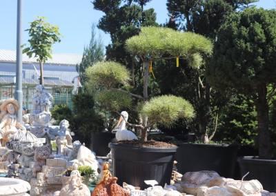 zahradnictvo-predajna-plocha-2
