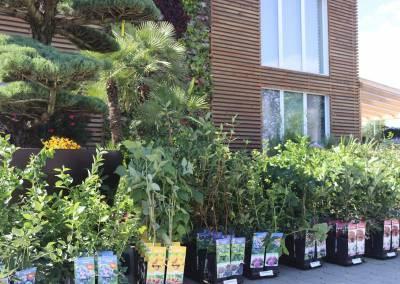 zahradnictvo-predajna-plocha-4