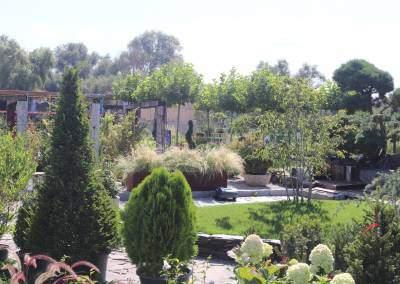 zahradnictvo-predajna-plocha-6