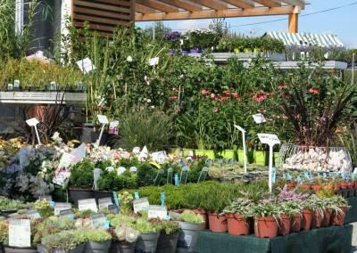 Záhradné centrum Bytča predajňa exteriér 2