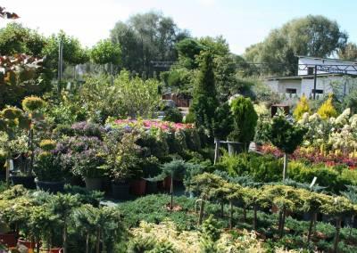 Záhradné centrum Bytča predajňa exteriér 3