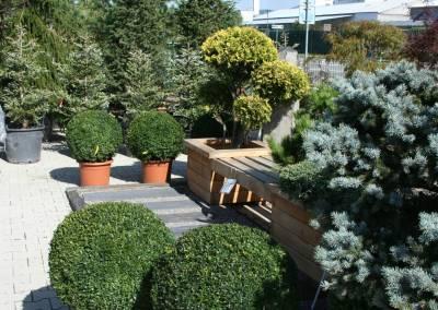 Záhradné centrum Bytča predajňa exteriér 4