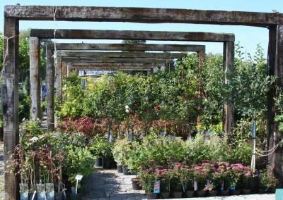 Záhradné centrum Bytča predajňa exteriér 5