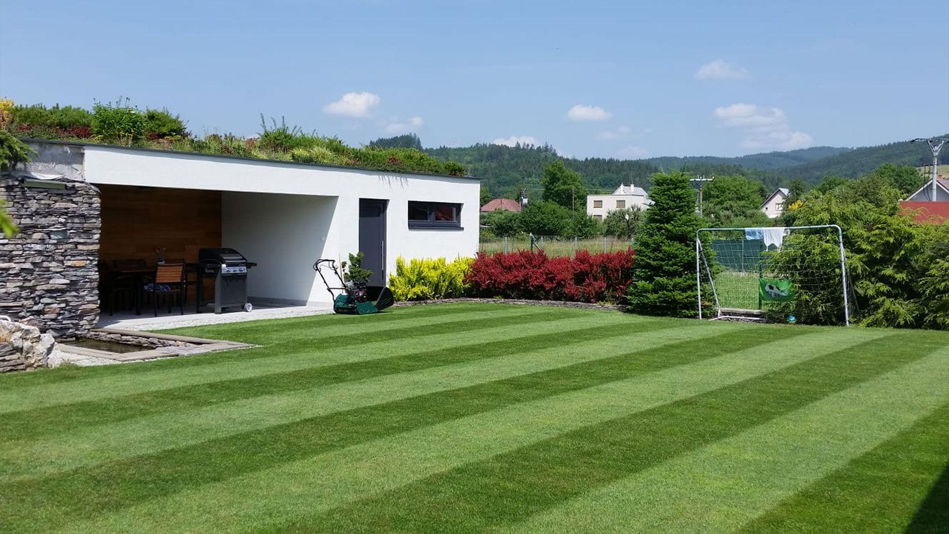 Výsev trávnika