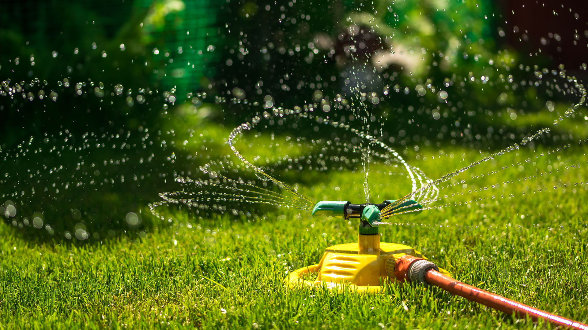 závlažovanie trávnika v záhrade